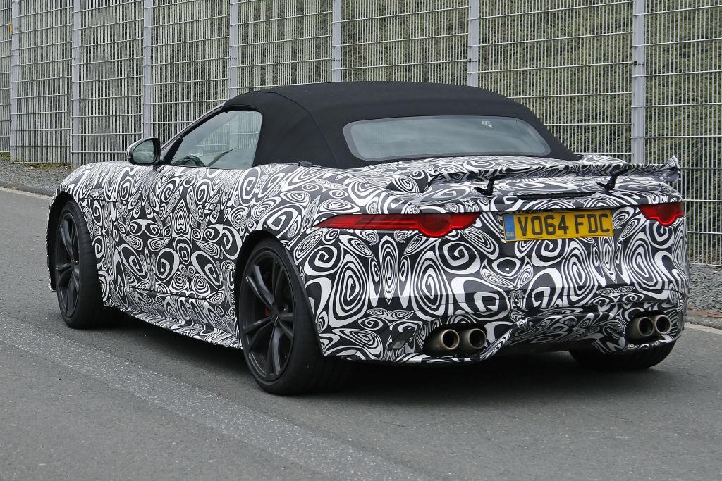 Optisch lässt sich die Jaguar-Verwandschaft nicht leugnen.