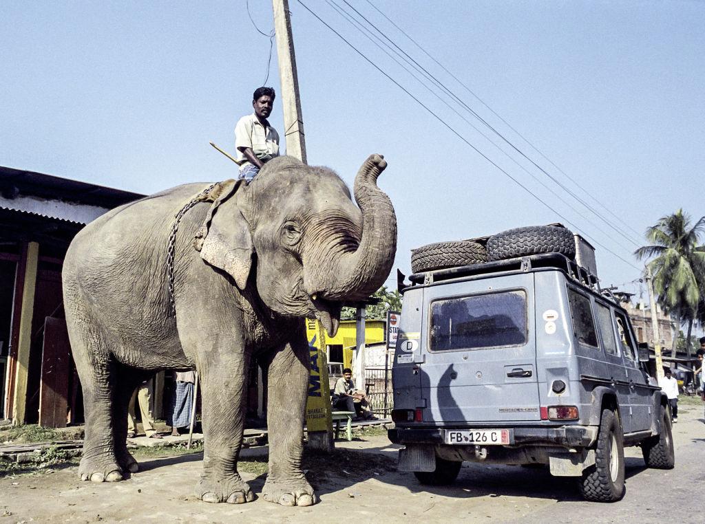 """Otto"" in Indien (2005)."