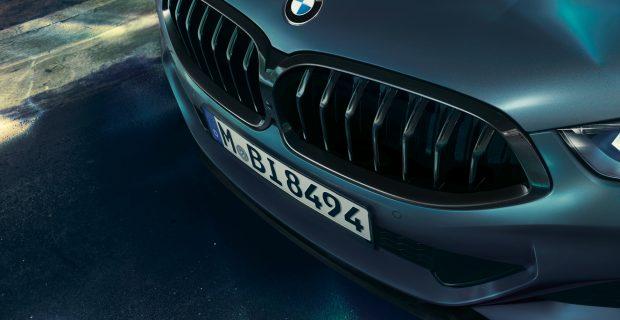Vollendet wie ein Schmuckstück: die BMW-Niere des 8er Coupés.