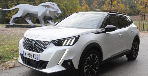 Gut gebrüllt, Löwe: Peugeot steigt mit dem 2008 und dem Schwestermodell 208 groß in die Elektromobilität ein.