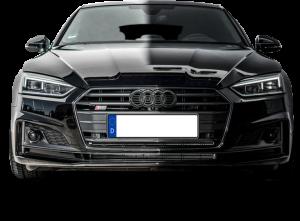 Audi S5 Sportback (8T)